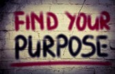 tmp/31541337-find-your-purpose-concept.jpg